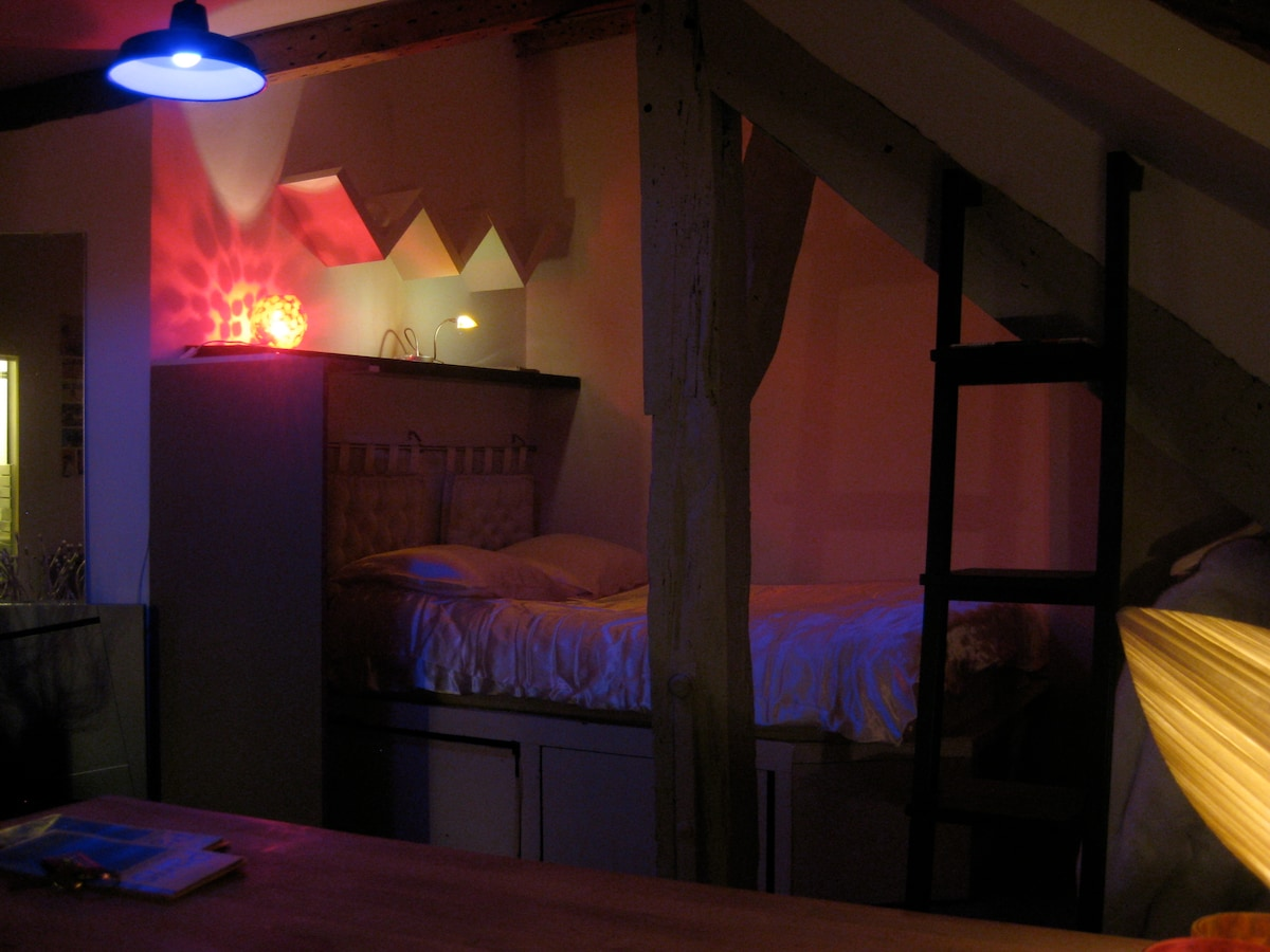 Romantic ¨Petit-Loft, high ceiilings, super bright, w/ dream-like romantic lighting v comfy beds, gorgeous, high-ceiling, bright bathroom large skylights, bathtub, shower, huge make-up mirror n lights, Fast WiFi internet, free tel !