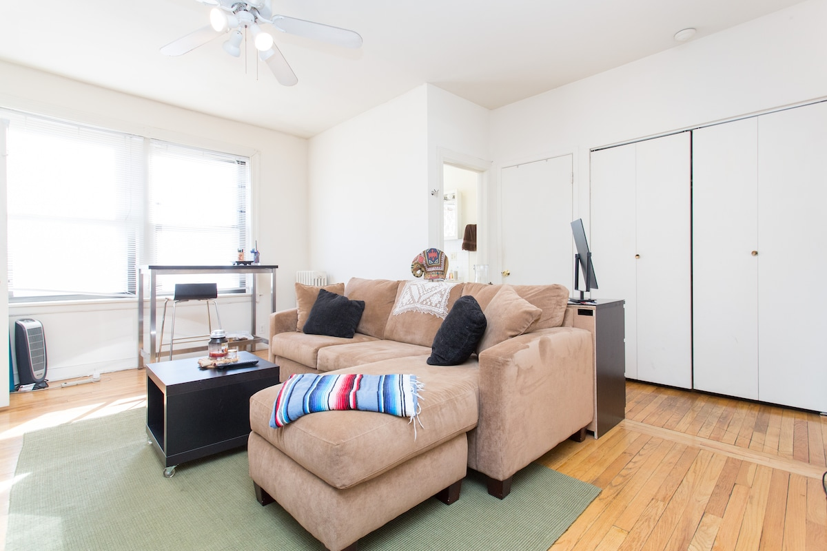 Cozy Jr. 1BD in Lakeview!