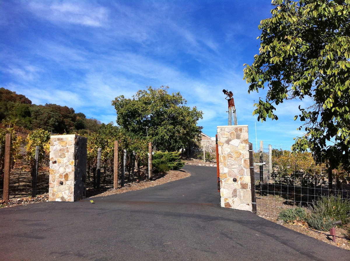 Gate to the house corridor-ed by vineyards.