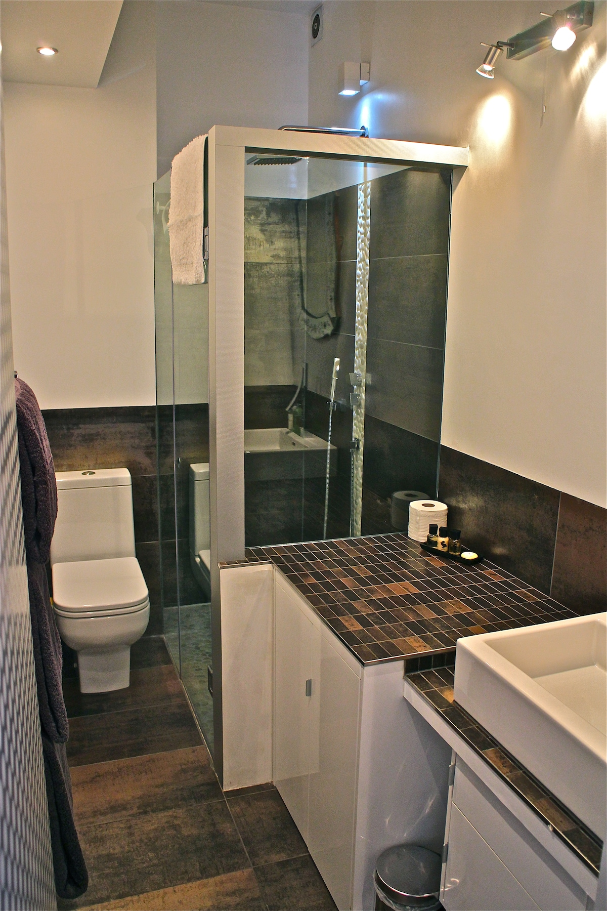 Shower room. Complimentary toiletries included
