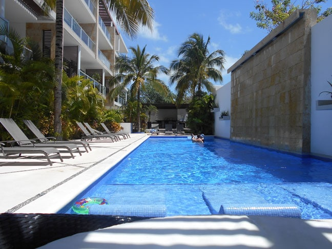 Amazing 60 foot pool with lovely tropical plants.