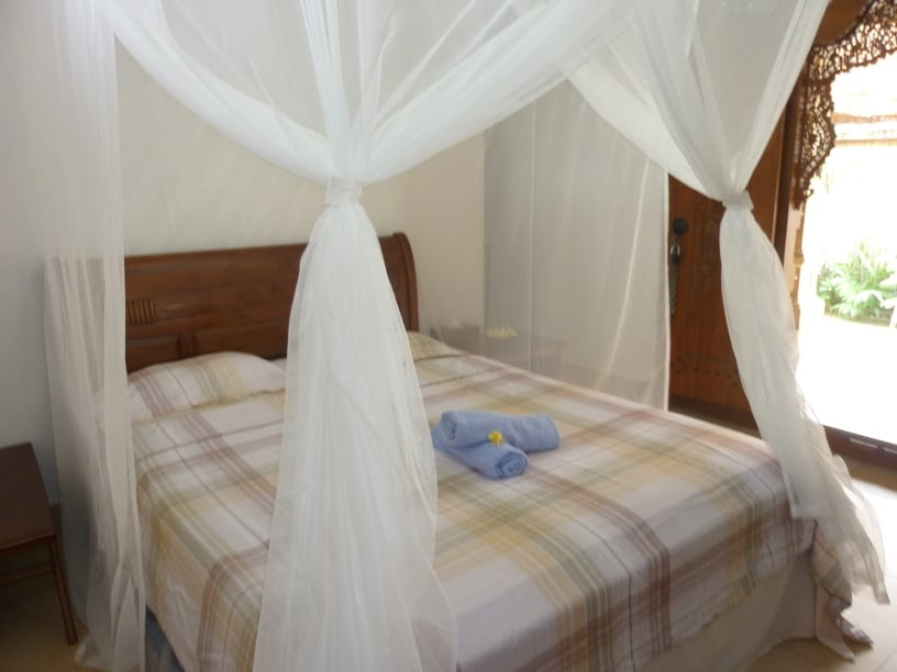 Mosquito nets and fresh linen and clean towels. The room has hot water, A/C and a growing library.