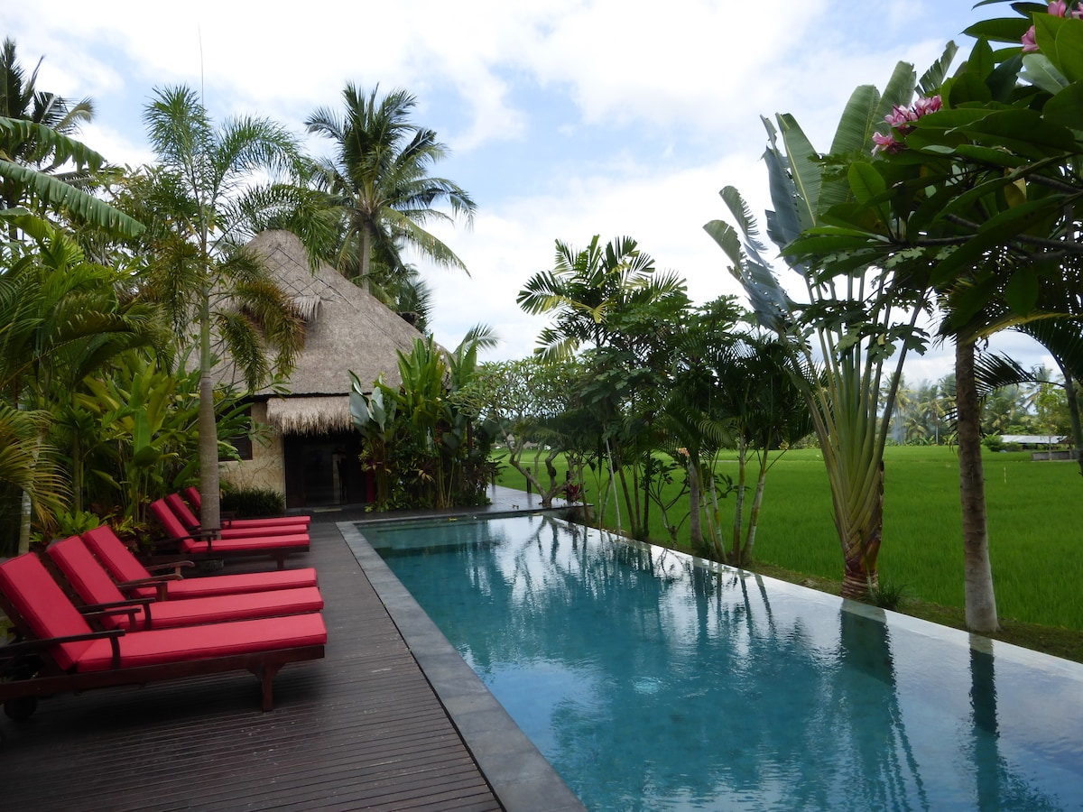 Take an early morning swim or late night dip in our amazing infinity pool