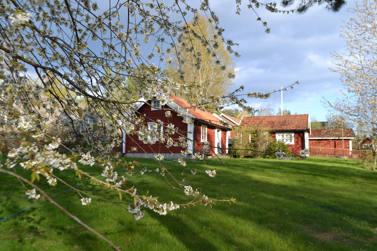 Spring in Källvik, The larger house to left and the small house to the right