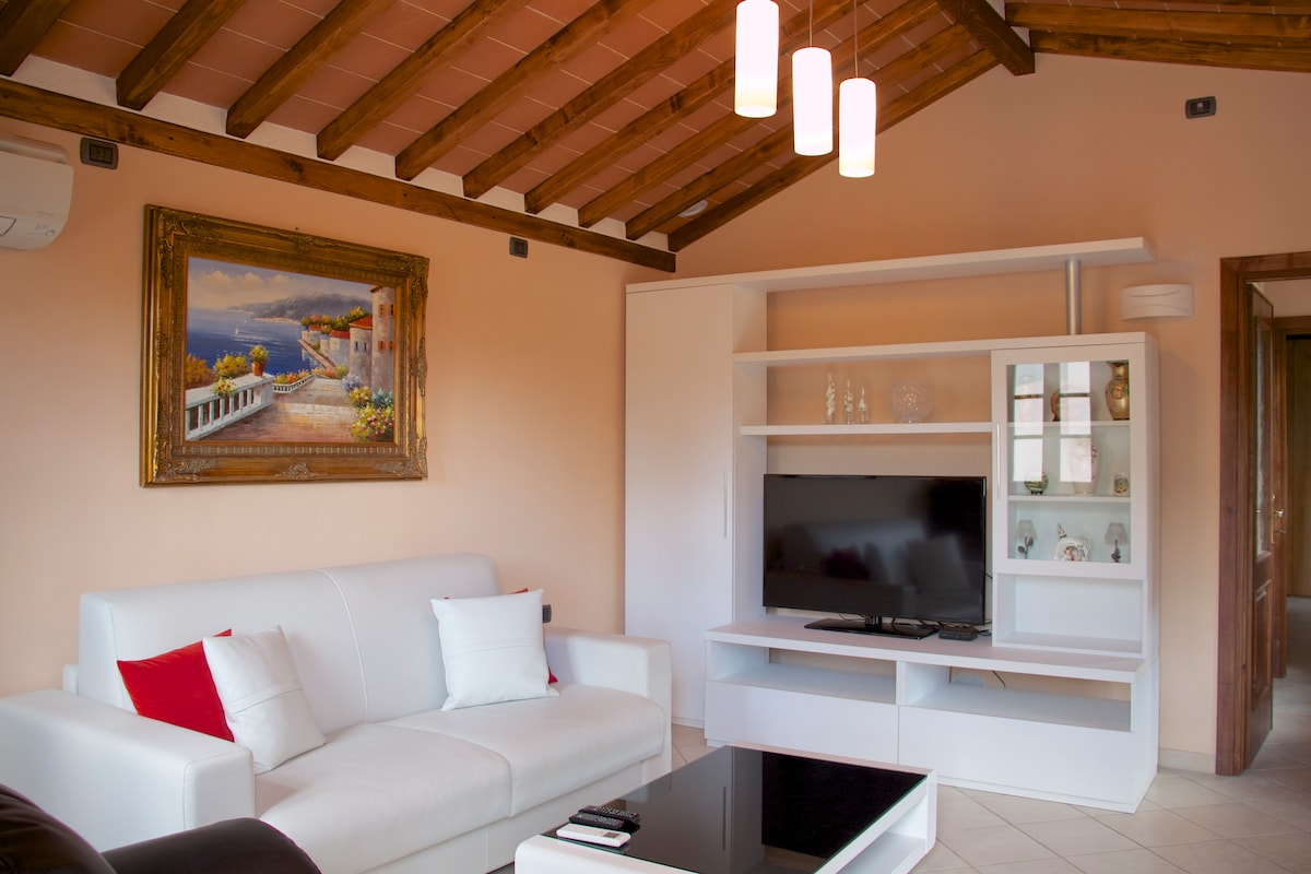 Modern Living Room with Air Conditioning and 46in Flatscreen TV