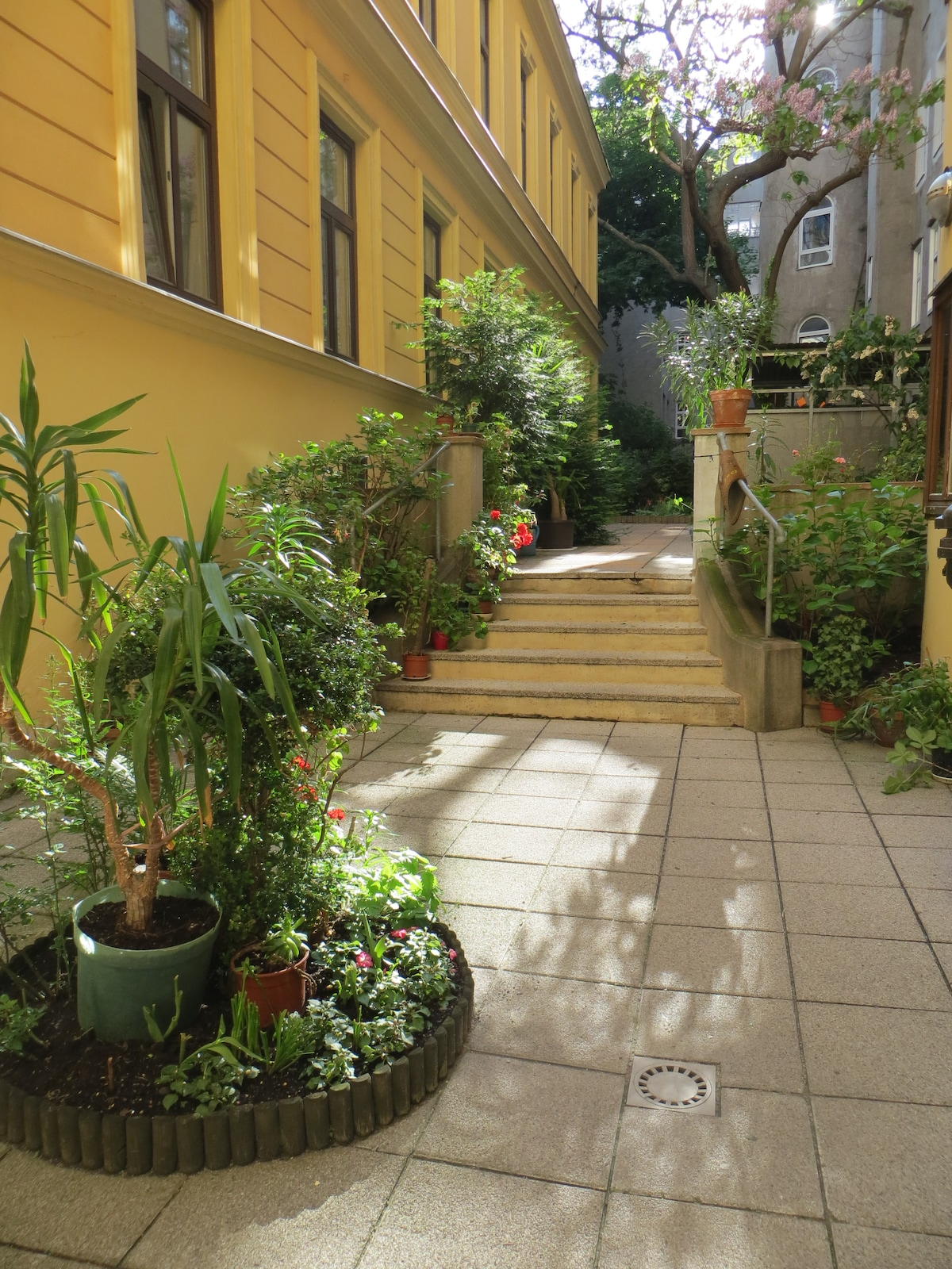 Little Oasis in the Heart of Vienna