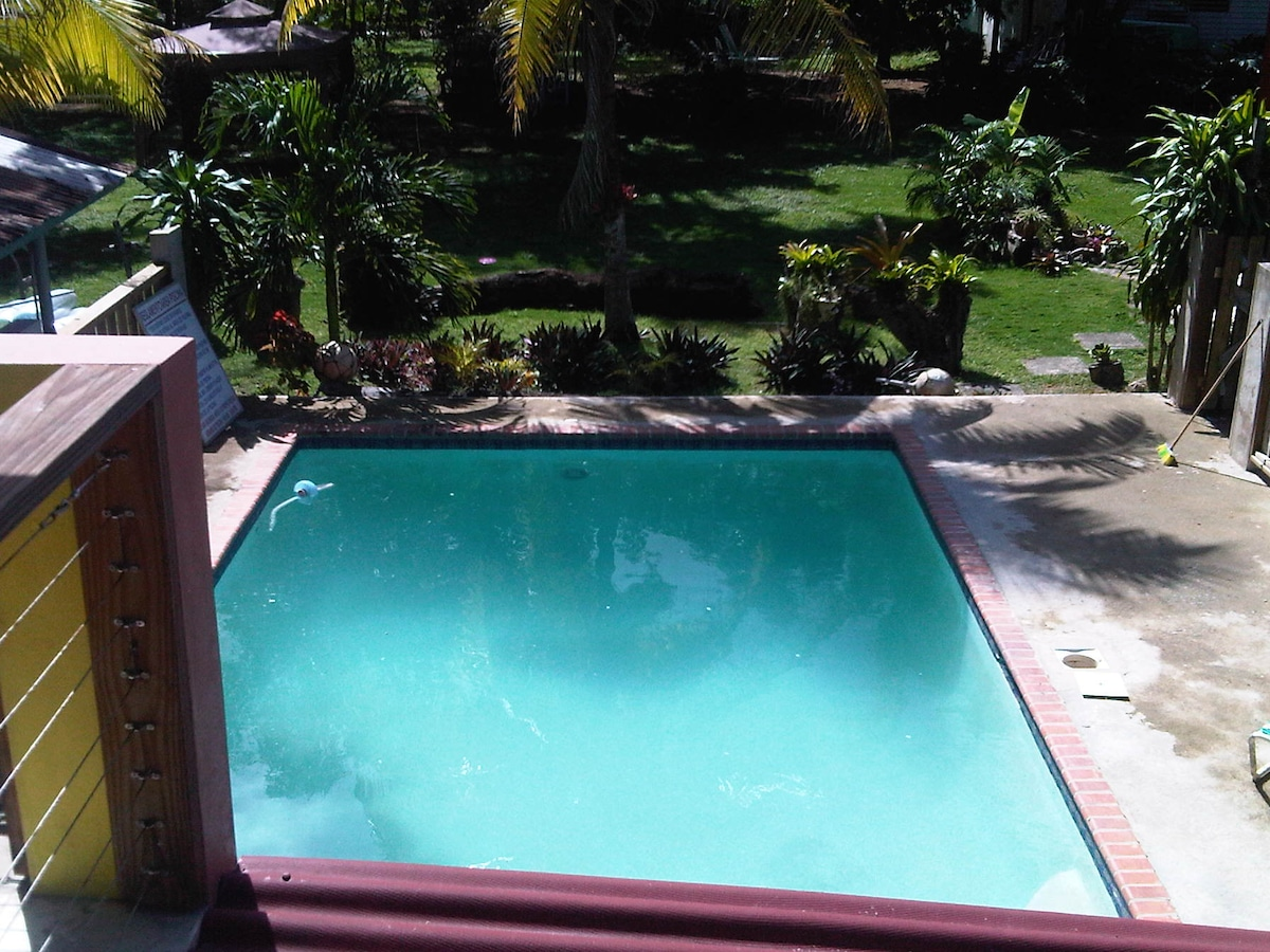 Salt water pool. View from second floor.  Beautiful gardens, plenty of parking space.