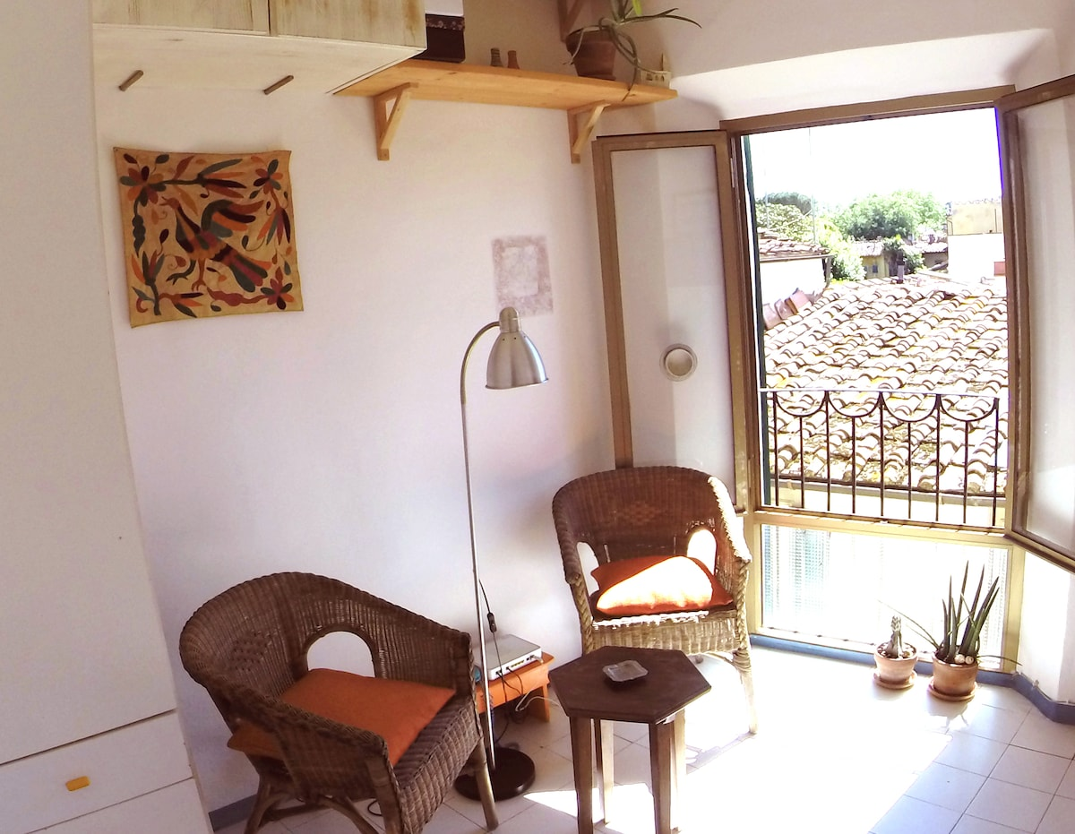 S.Spirito apartment with view