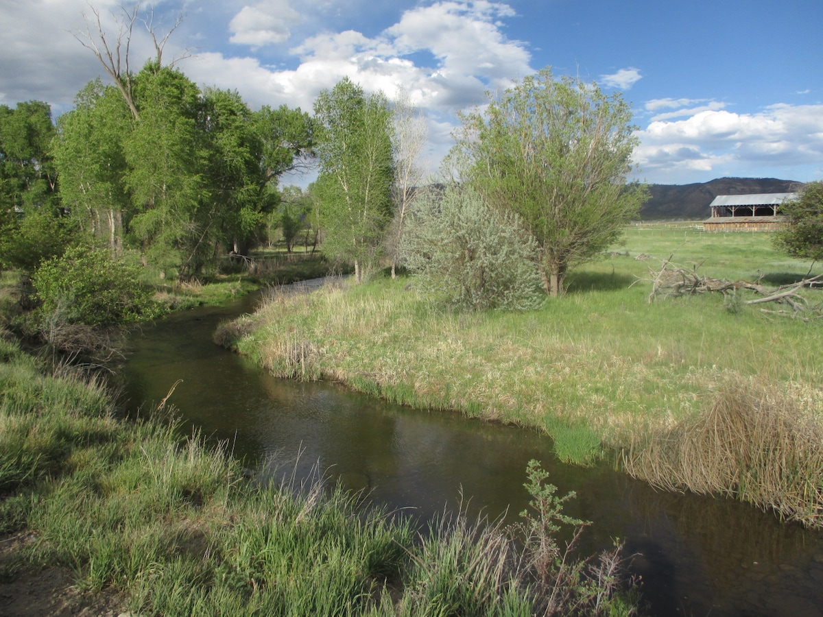 Mancos River Runs Through It!