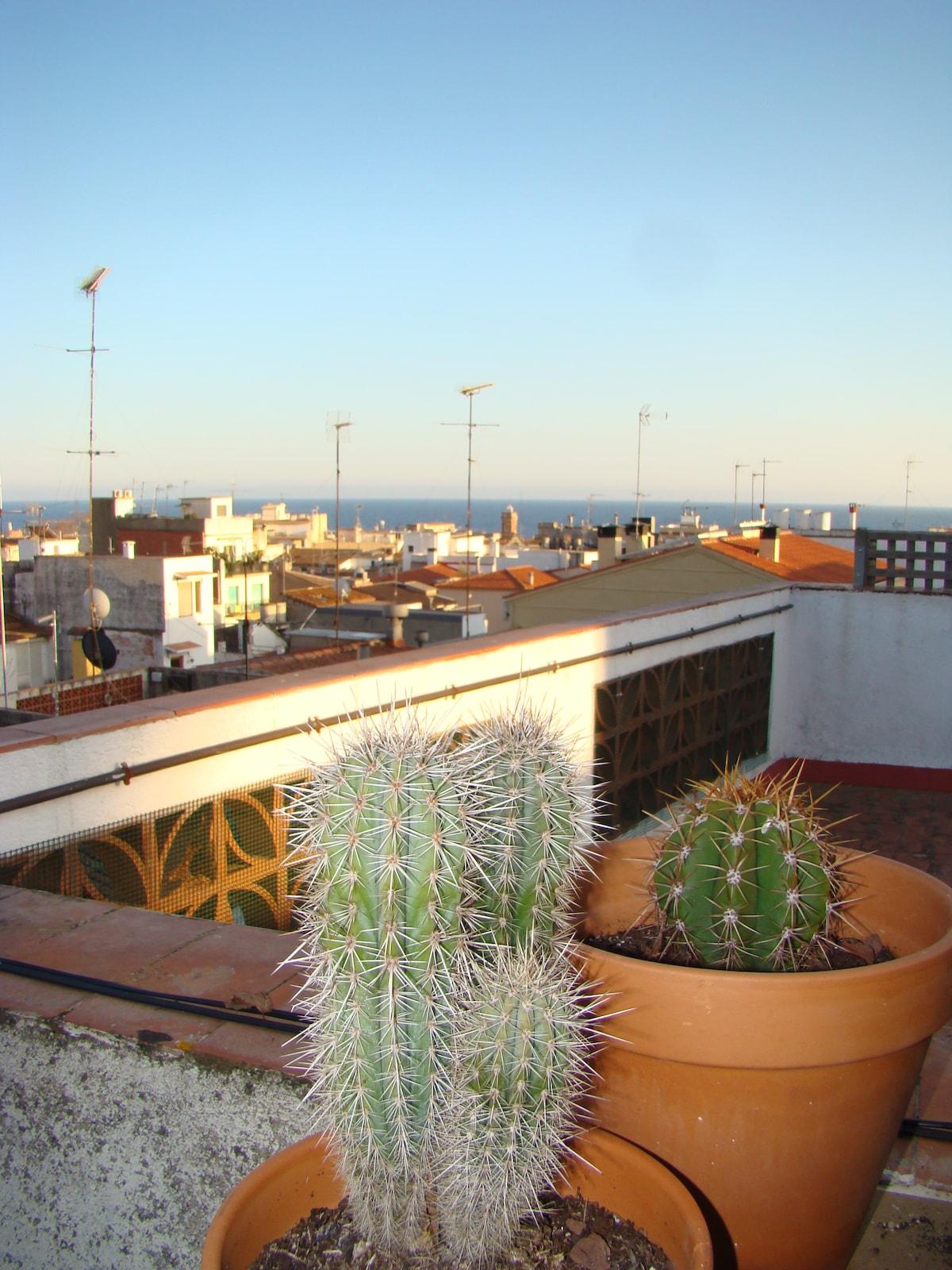 Vistas des de la terraza principal.