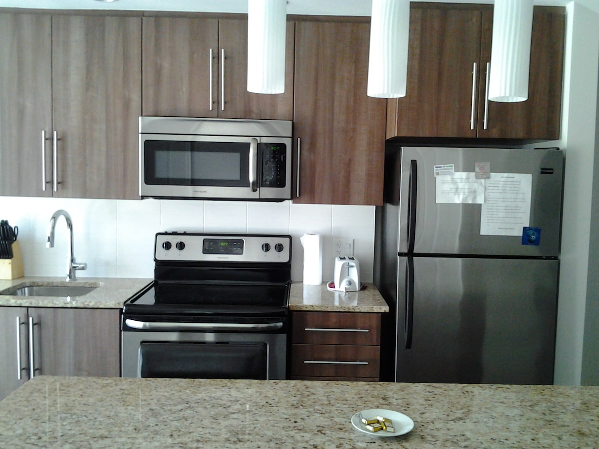 1bed LuxuryCondo DowntownParliament