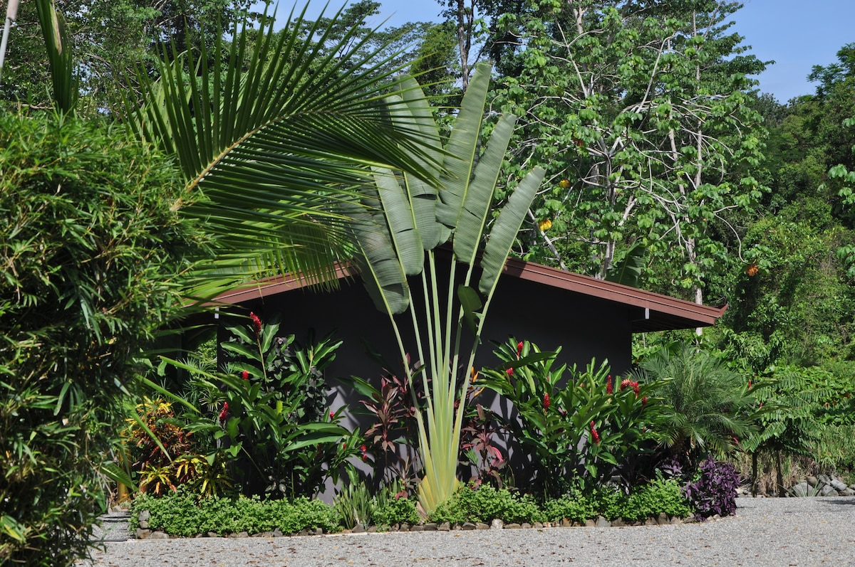 Rear view of casita shaded by Palm