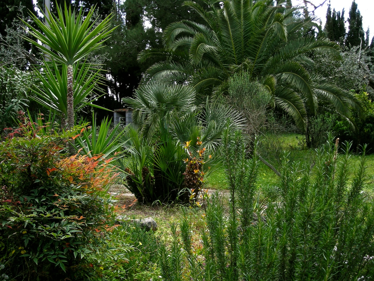 Il giardino !!! (the garden)