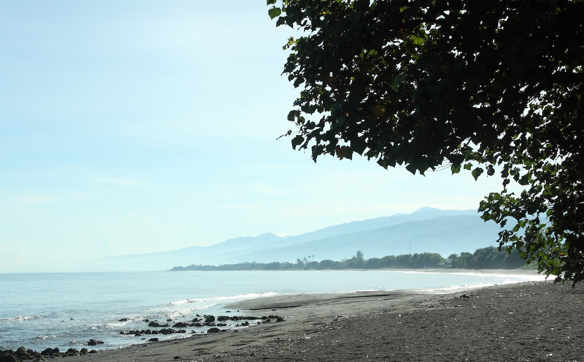 View to the east up the coast from Jaa Bali