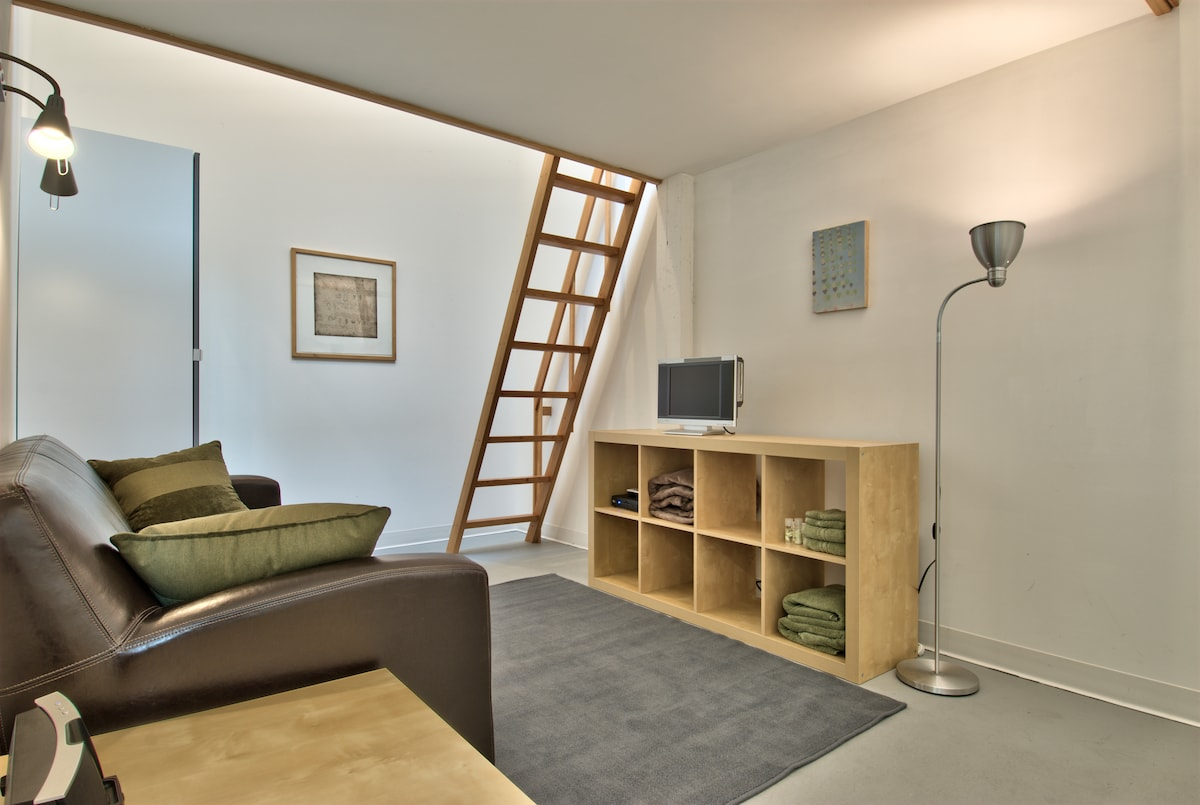 Studio #17 is split into two levels, with a bed loft & skylight above.