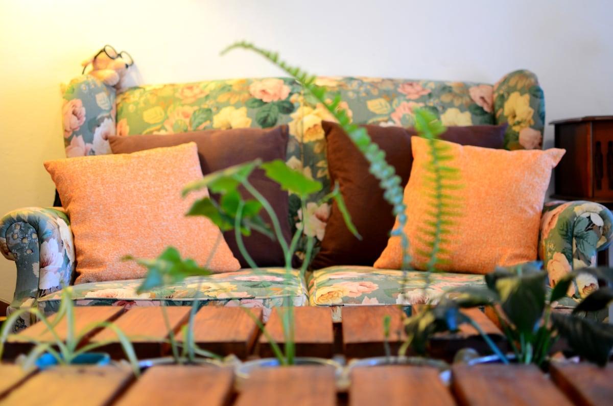 Comfy couch with 'indoor garden'.