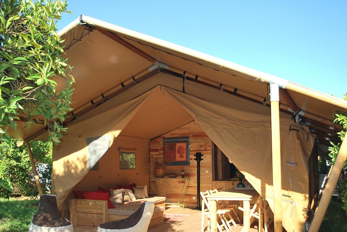 Eco glamping in Safari tent