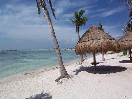 Beachfront Condo with ocean views