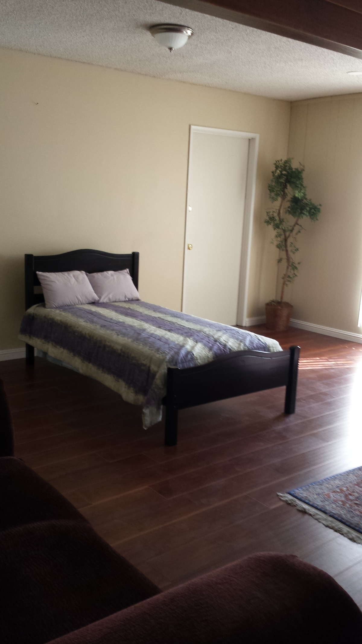 Large Room- Twin Bed & Couches (6)