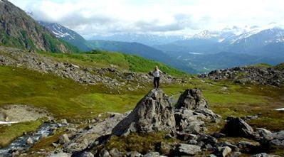 View from Mount Marathon, a hiking trail within a few block of Arctic Paradise.
