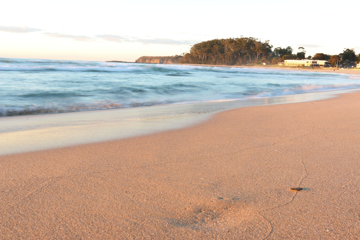 Surfrider 11 - Beachside Paradise