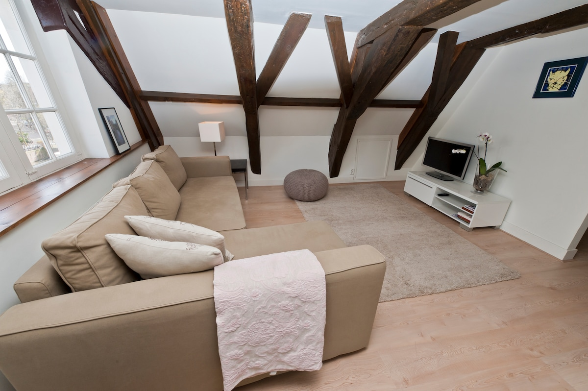Modern lounge with widescreen TV and comfortable double sofa bed.