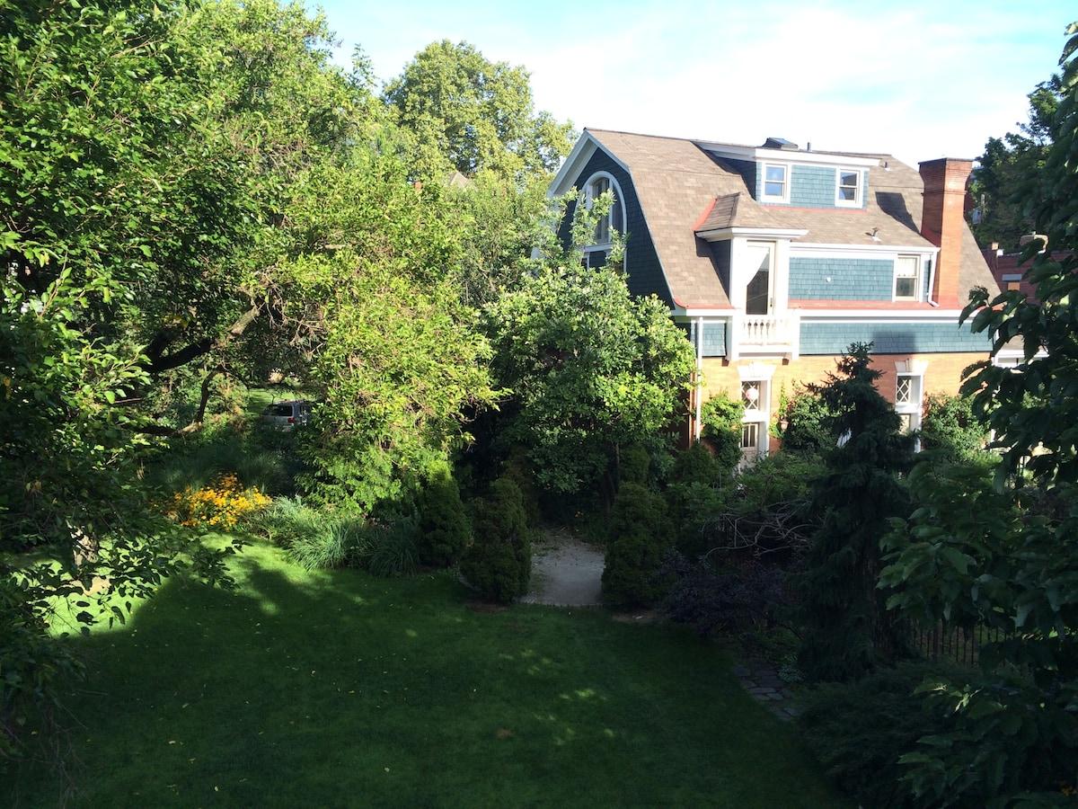 Tree top studio apartment