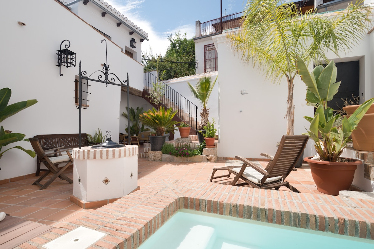 Andalusian patio-small pool, palms
