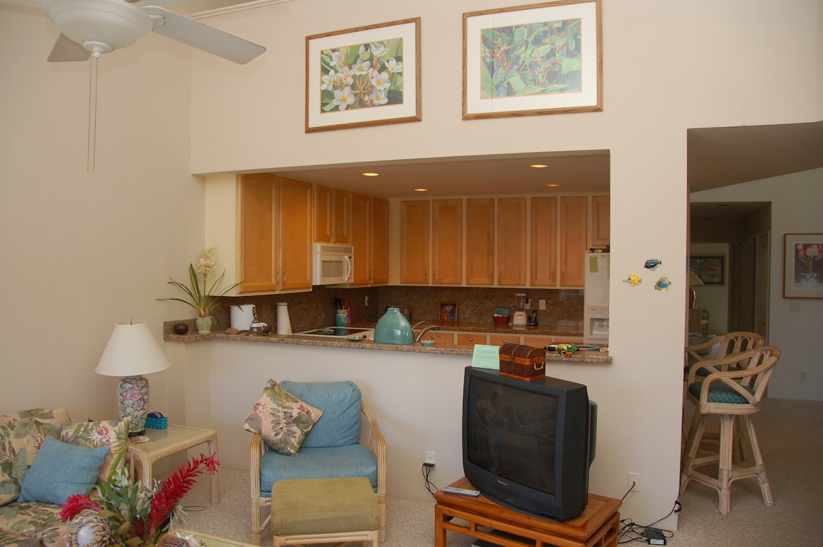 Spacious living room with 24 ft ceilngs and new 32 in flat screen TV w/ DVD player plus lots of movies... HBO also.