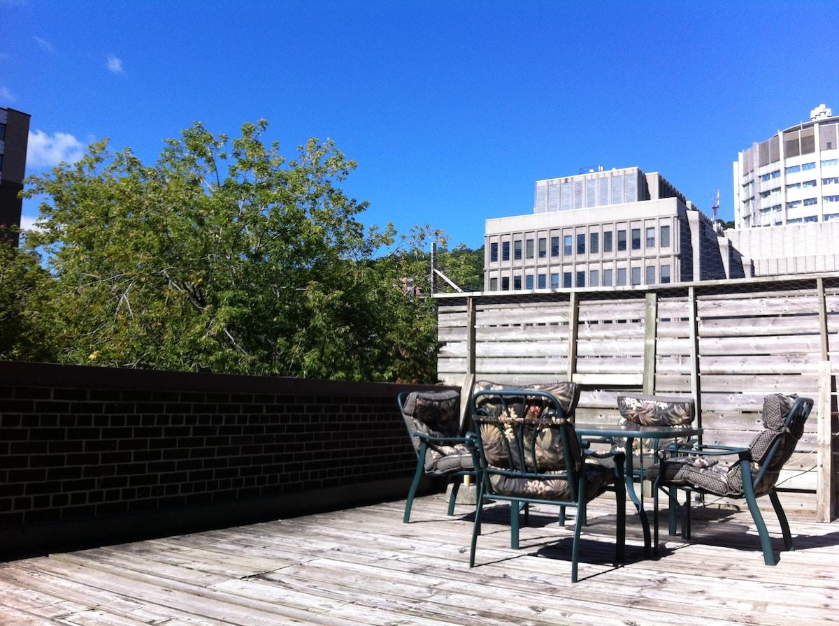 McGill Superb Penthouse