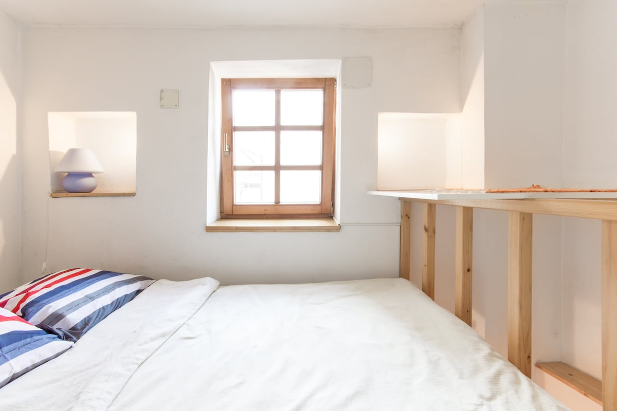 Microflat in the heart of Ljubljana