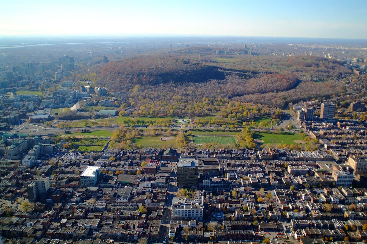 Aerial view of the Plateau / Mile-end neighbourhood as well as Mont-Royal Park.