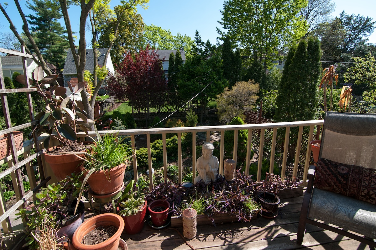 early spring deck/view of back yard garden