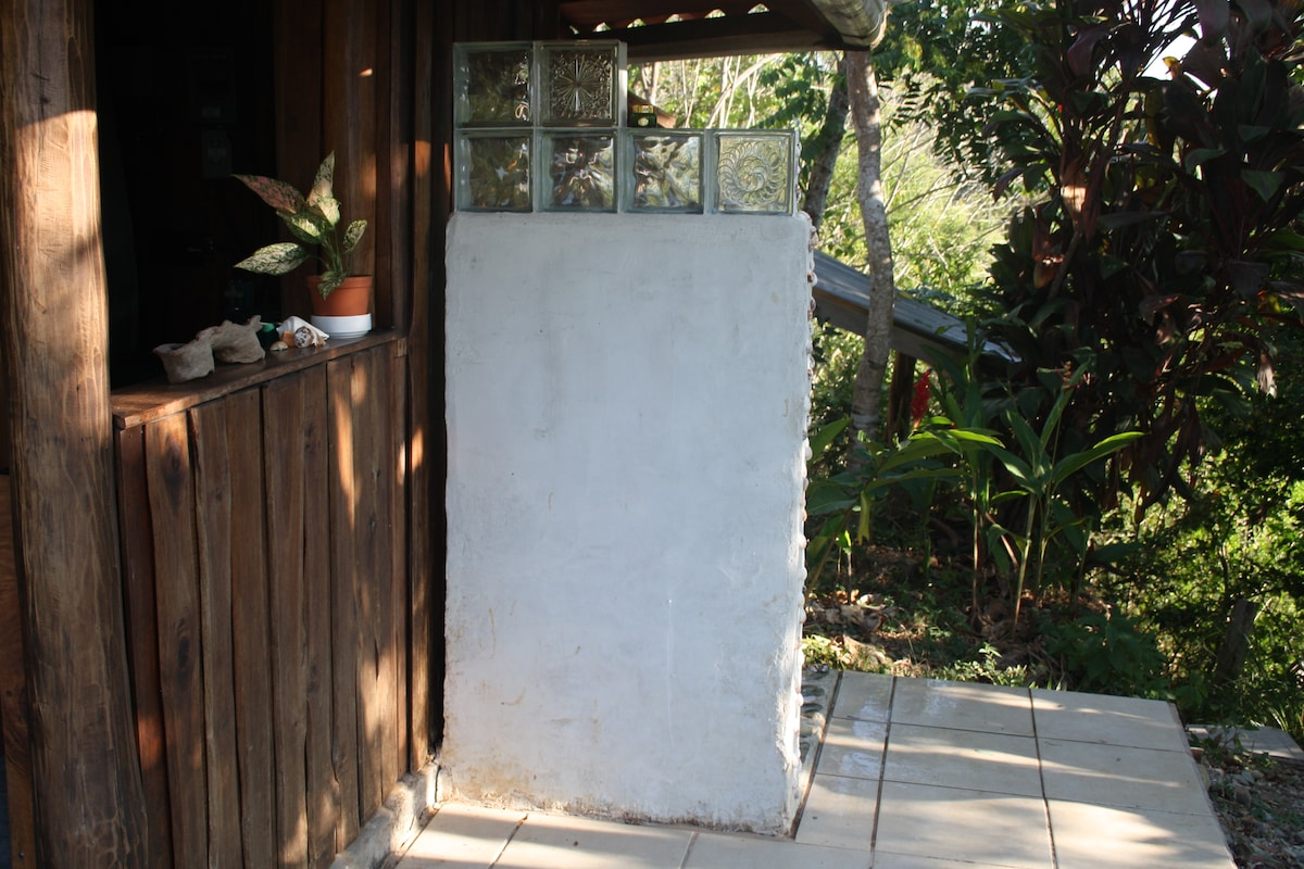 Outdoor shower is on the other side of privacy wall with glass block accents