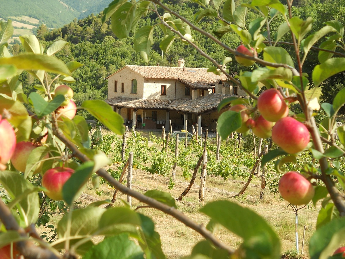 Apartment on working organic farm