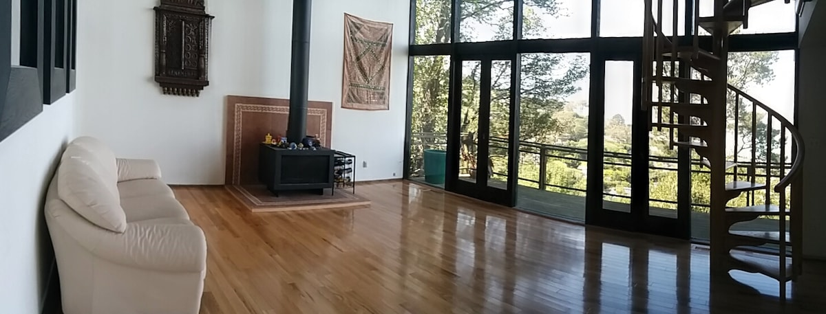 Sausalito house with amazing views