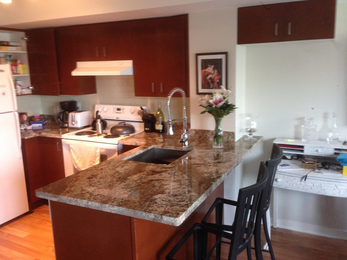 Share great apartment in DT Toronto