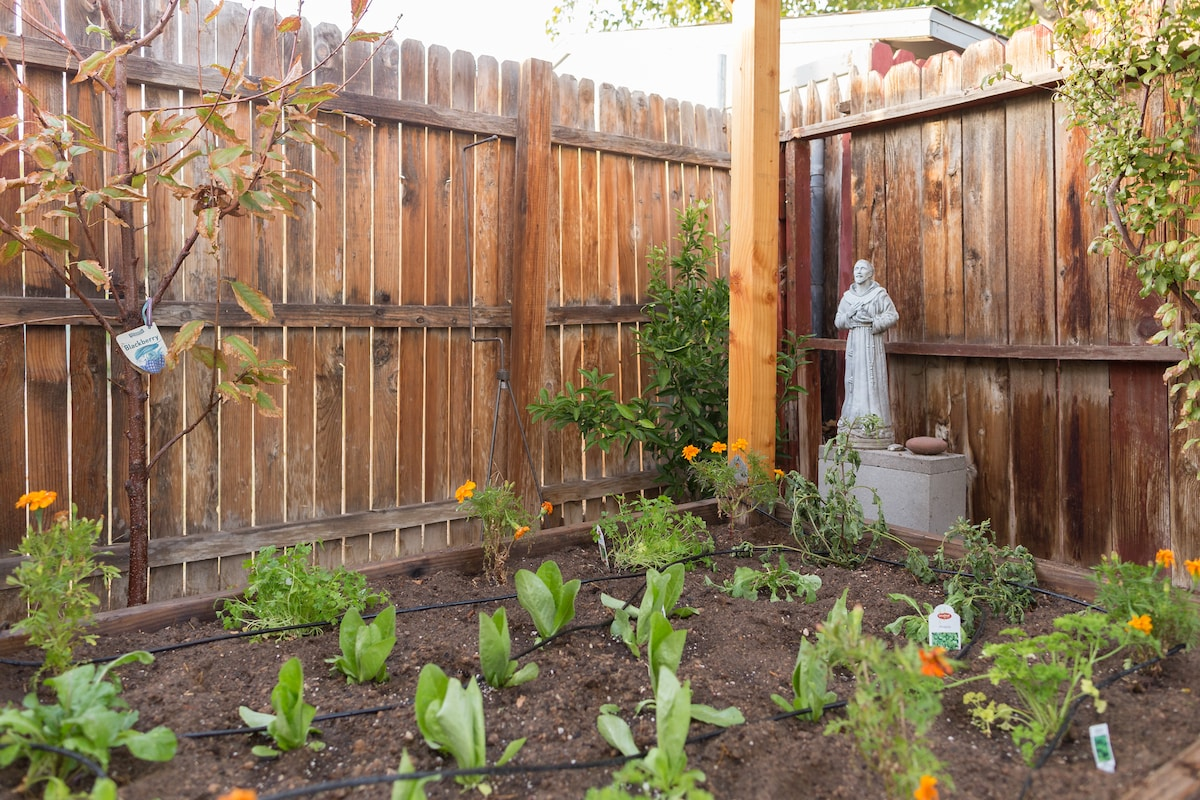 St. Frances graces the garden where you can pick your own fresh greens and herbs. (np)