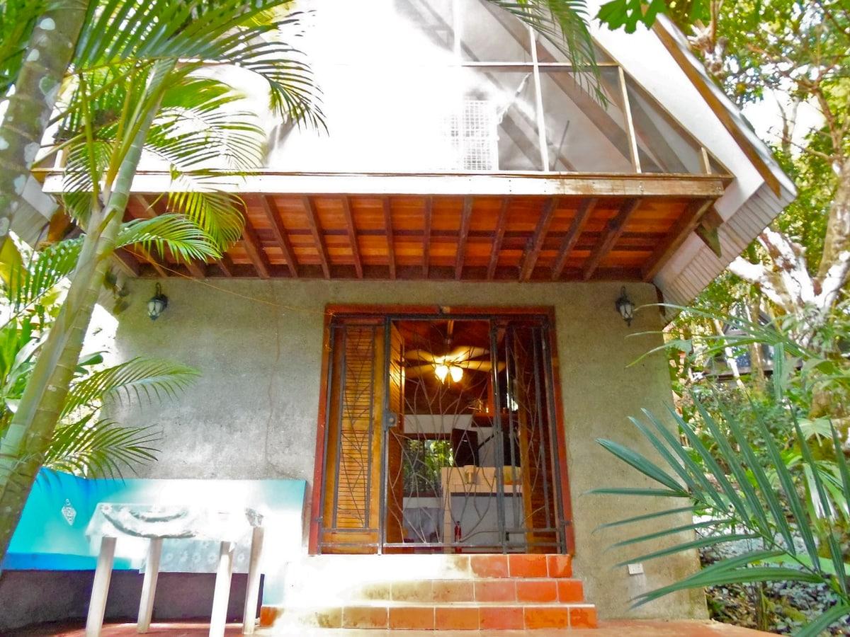 Jungle Casa - Doce-A