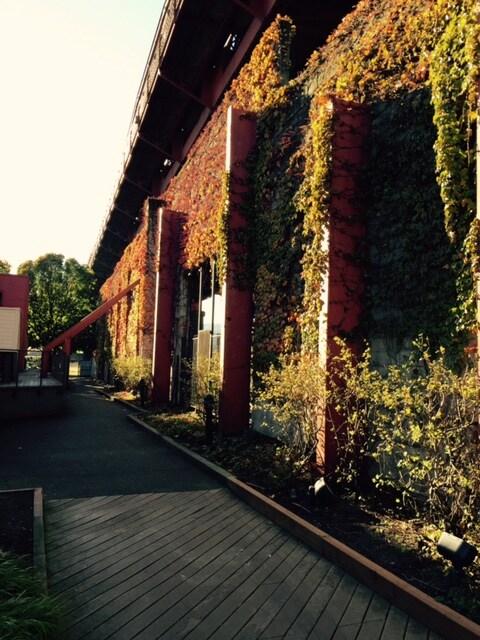 Riverfront Pearl modern condo