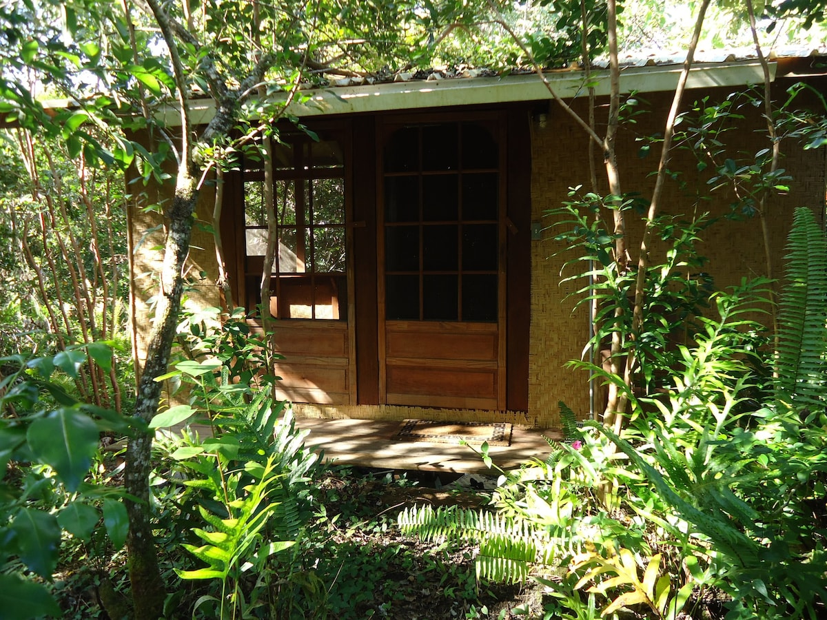 The Peaceful Adjacent Butterfly Cabin for Third Person