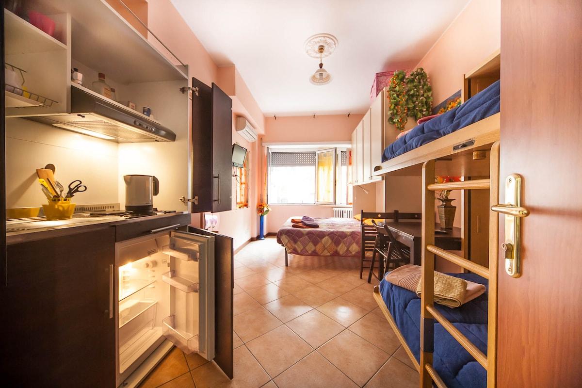 """VATICAN BLU"" Apartment ,1-4p CENTR"