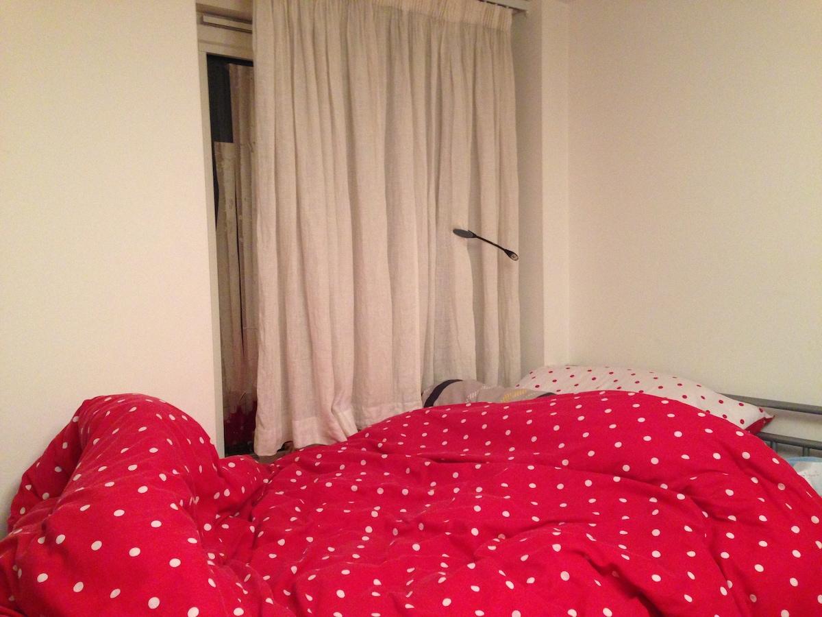 Cozy, Secure, Bright Single Room