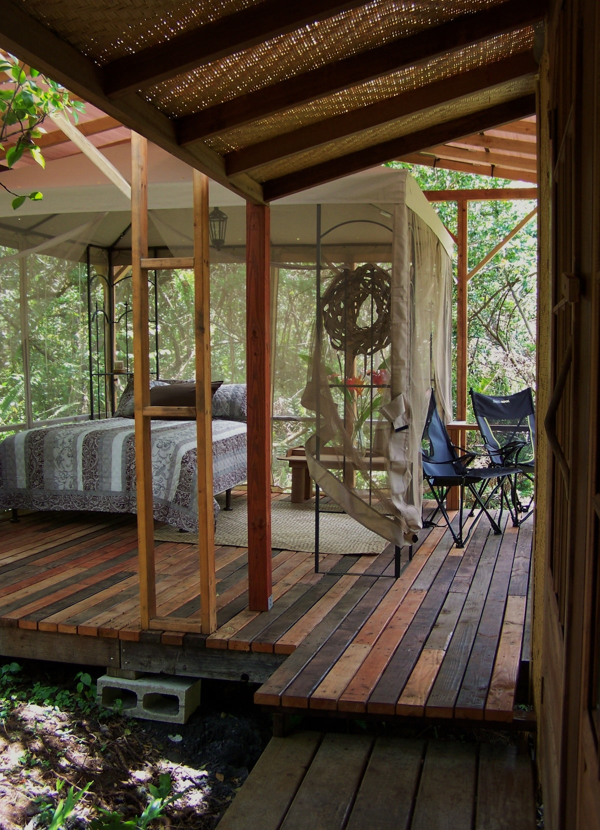 The Peaceful Dragonfly Cabin.