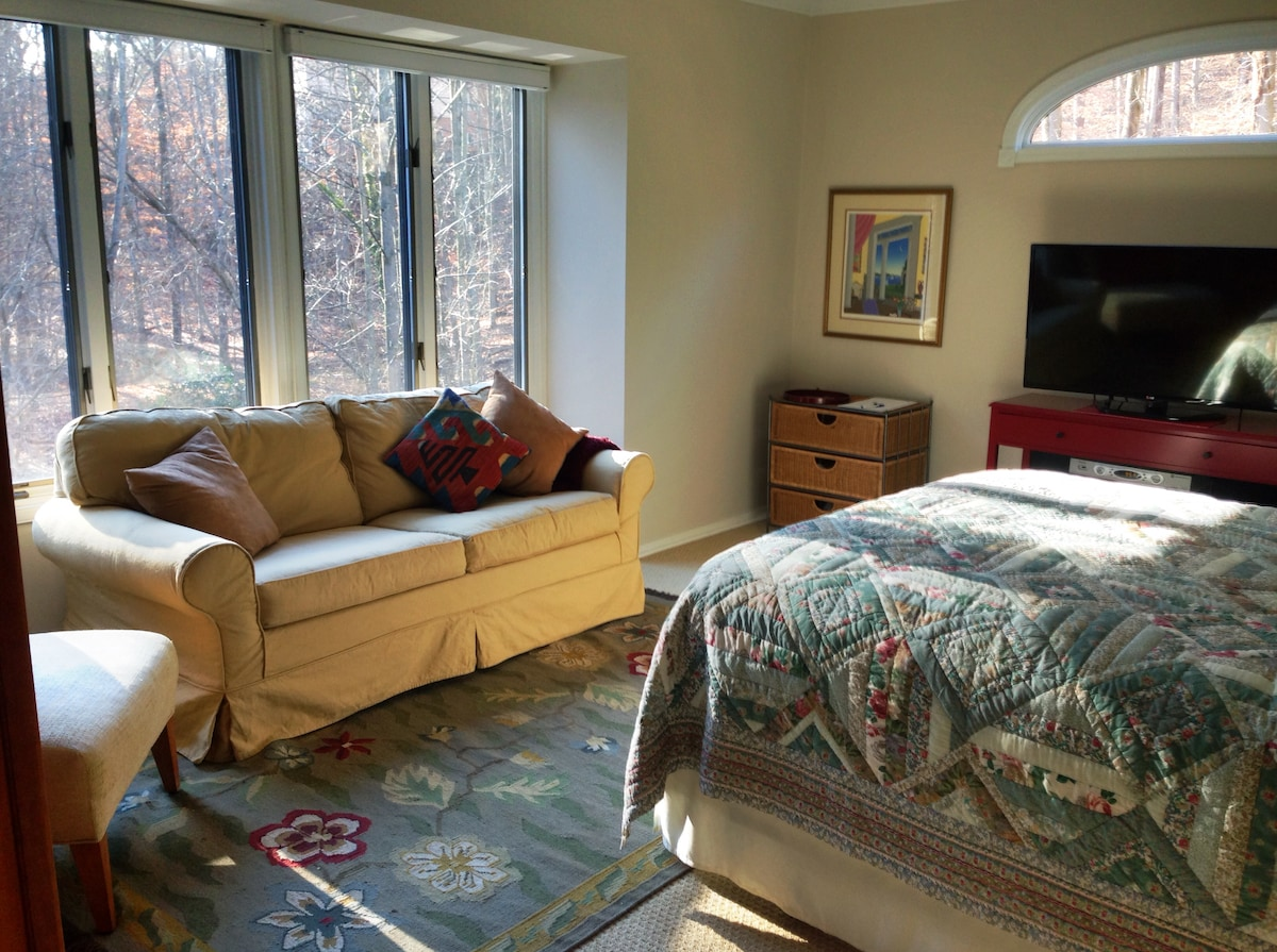 Large master suite with queen bed, sofa, HD TV, wifi, and en suite bathroom