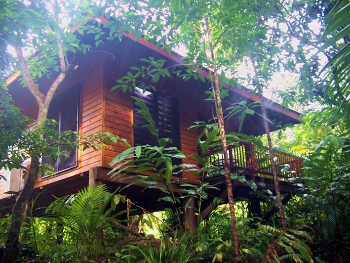 Wildwood cabin on organic orchard