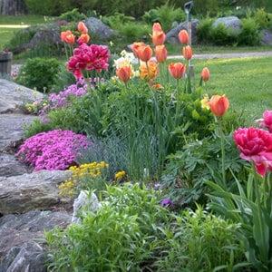 Spring at Evernest