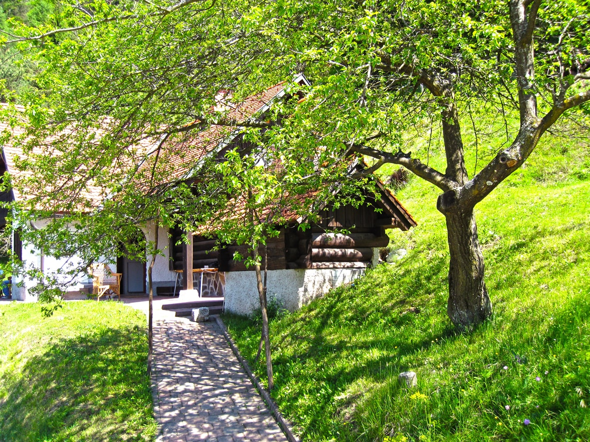 The front view and entrance to the chalet.