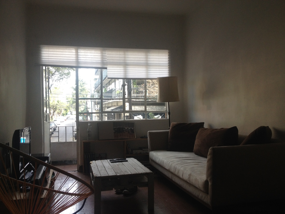 Cozy Apartment in Heart of Condesa