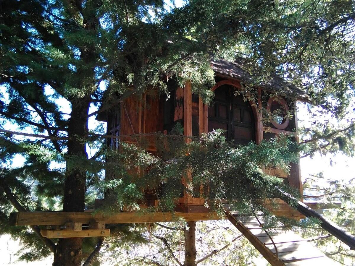 Treehut with stoning views!